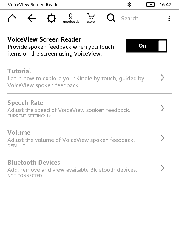 Turn On VoiceView